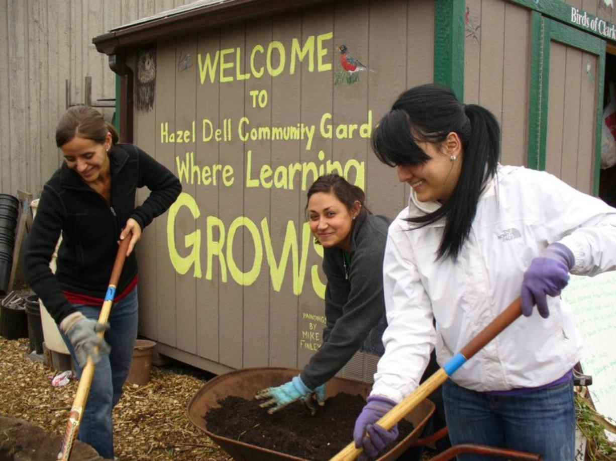 Northeast Hazel Dell: Jody Shulnak, left, Clark College service learning and volunteer program manager, helps Clark College Running Start students Zeina Hourani, center, and Melissa Barnes at a Hazel Dell School and Community Garden work party.