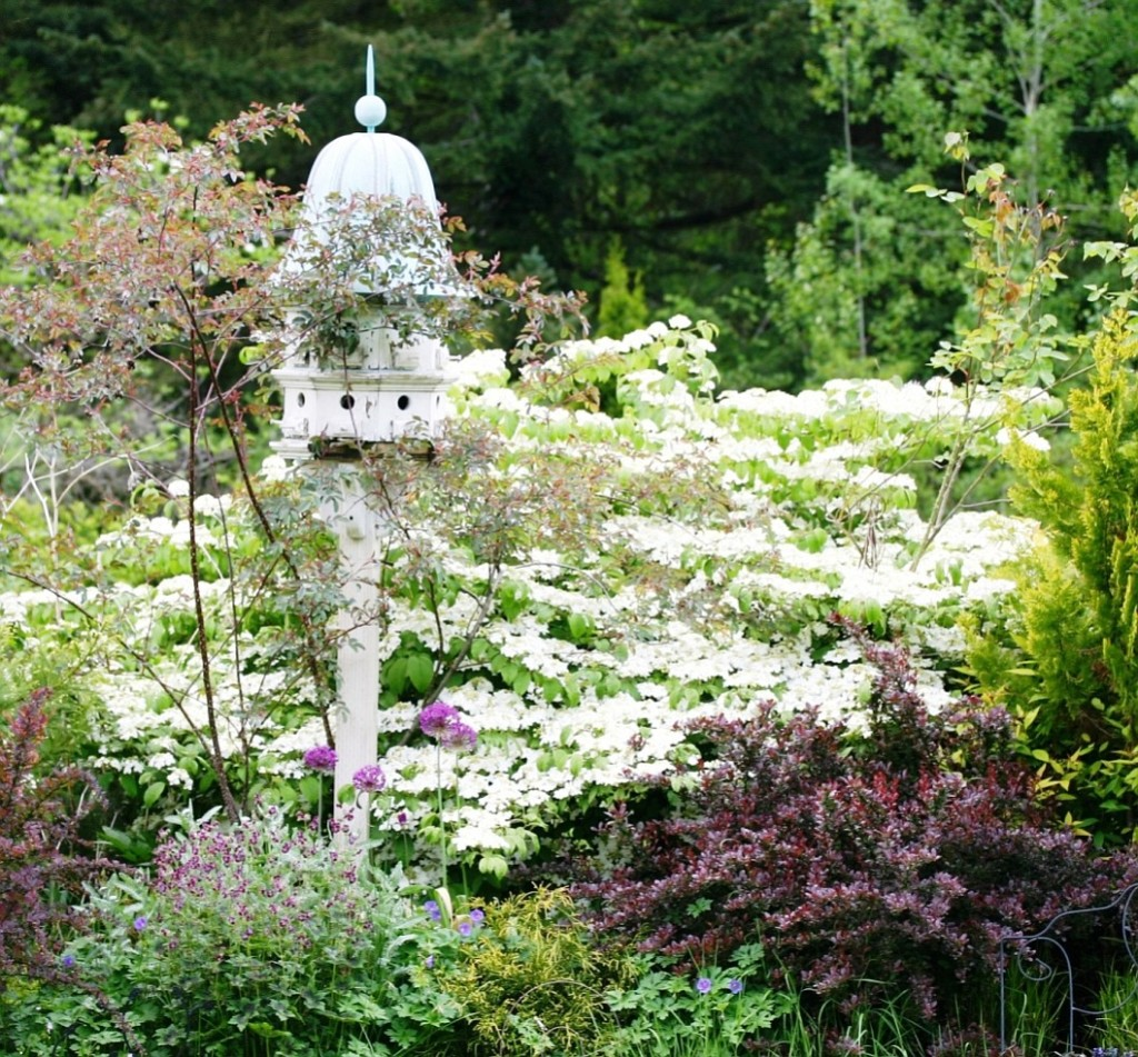 A Good Mix Of Plant Types Is The Basis Of The Most Intriguing Gardens In Our
