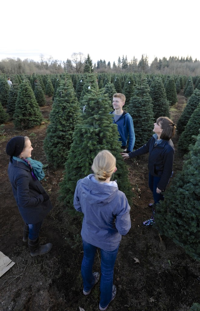 Laura Kirsch, right, considers a tree at Thornton's Treeland with her kids,  Annie - Growing A Christmas Tradition The Columbian