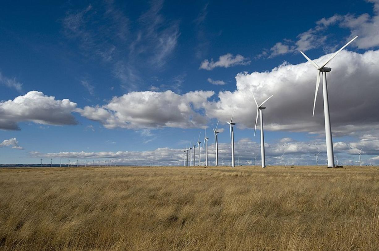 Hundreds of wind turbines rise from the dryland wheat country of eastern Klickitat County, where wind farms are permitted outright under county zoning. The county has seen 624 of the 41-story turbines rise in the past four years.