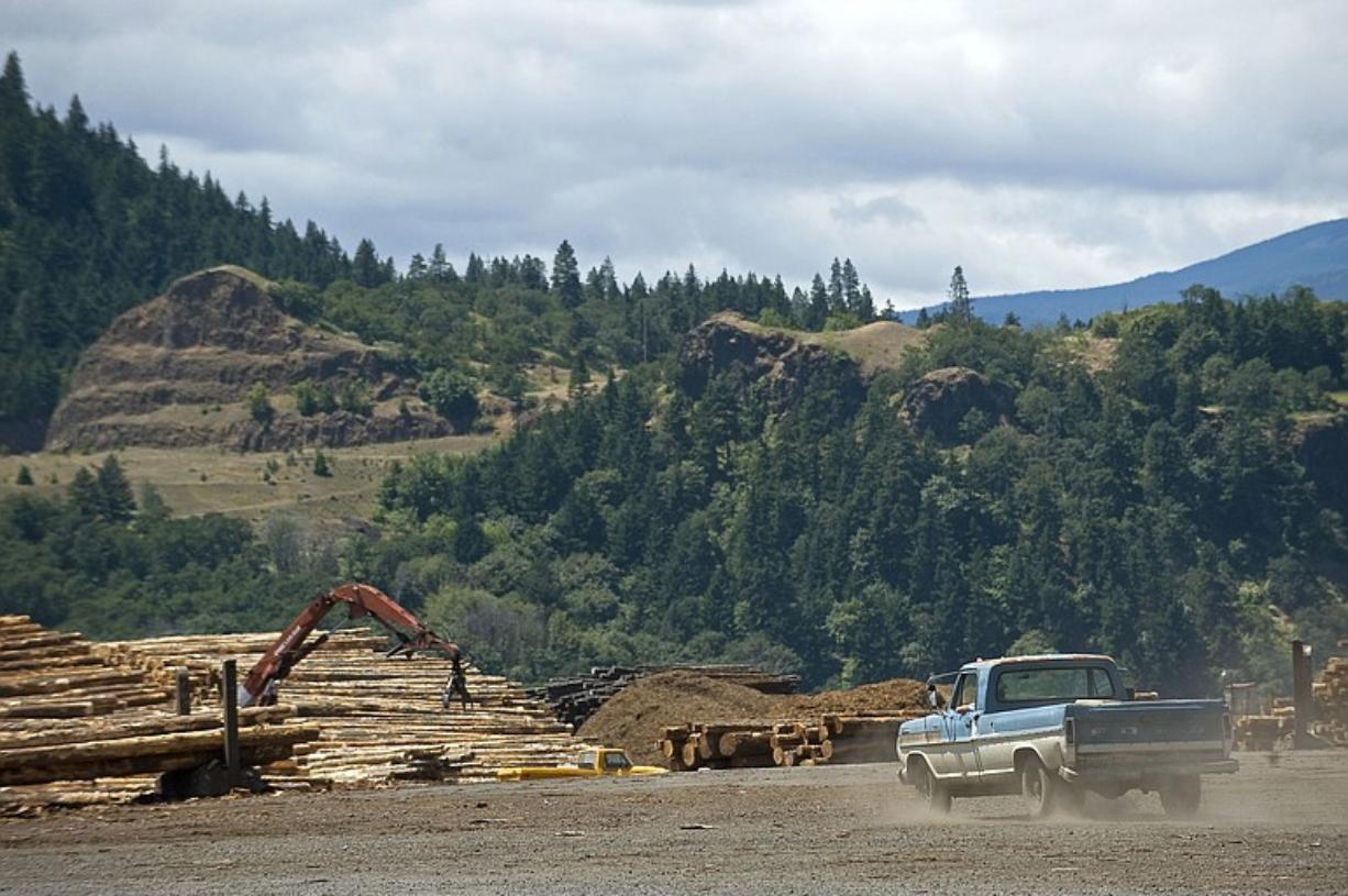 Timber was the mainstay of the Gorge economy in Skamania and Klickitat counties until the early 1990s, when federal timber sales plummeted. SDS Lumber Co.
