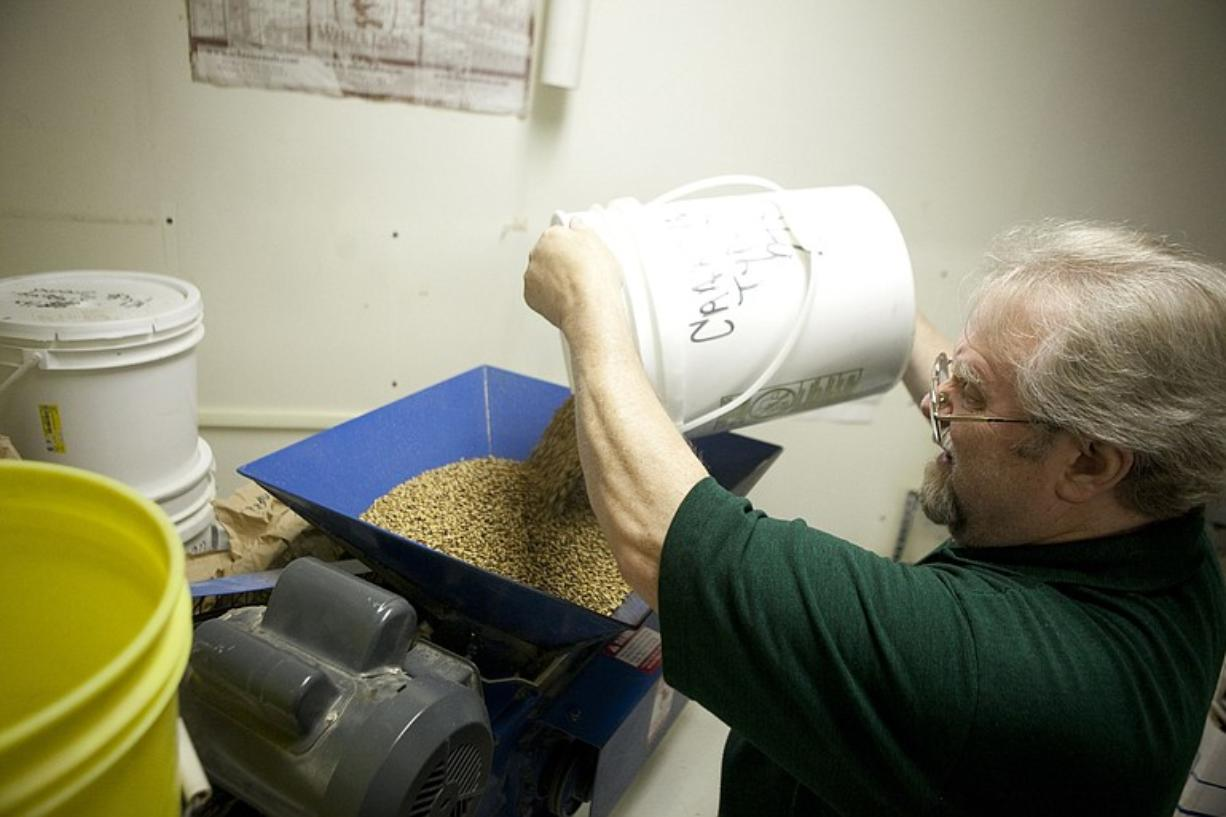 Larry Pratt, brewmiester at Salmon Creek Brewery, pours malt and barley into a grinding machine during the beer making process.