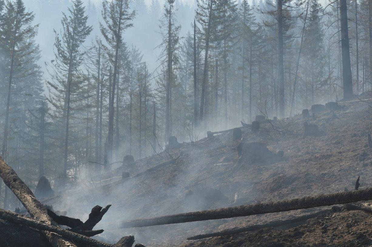 Courtesy of the state Department of Natural Resources A smoldering landscape remains in the wake of the Gold Rush Fire, which burned about 60 acres in western Skamania County, several miles from Dougan Falls. The fire was 100 percent contained by Sunday.