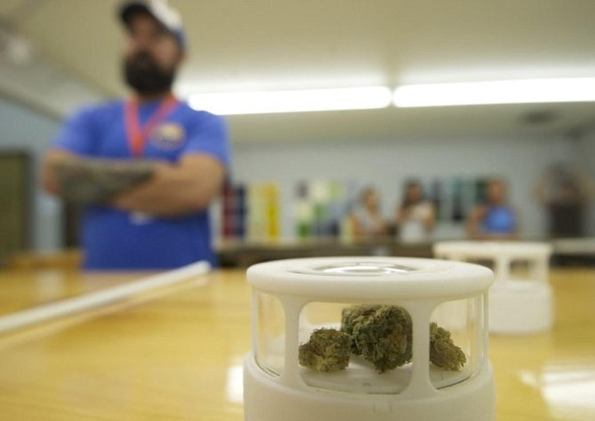Customers have the opportunity to inspect different strains of marijuana for sale during the grand opening of New Vansterdam marijuana shop on July 11.