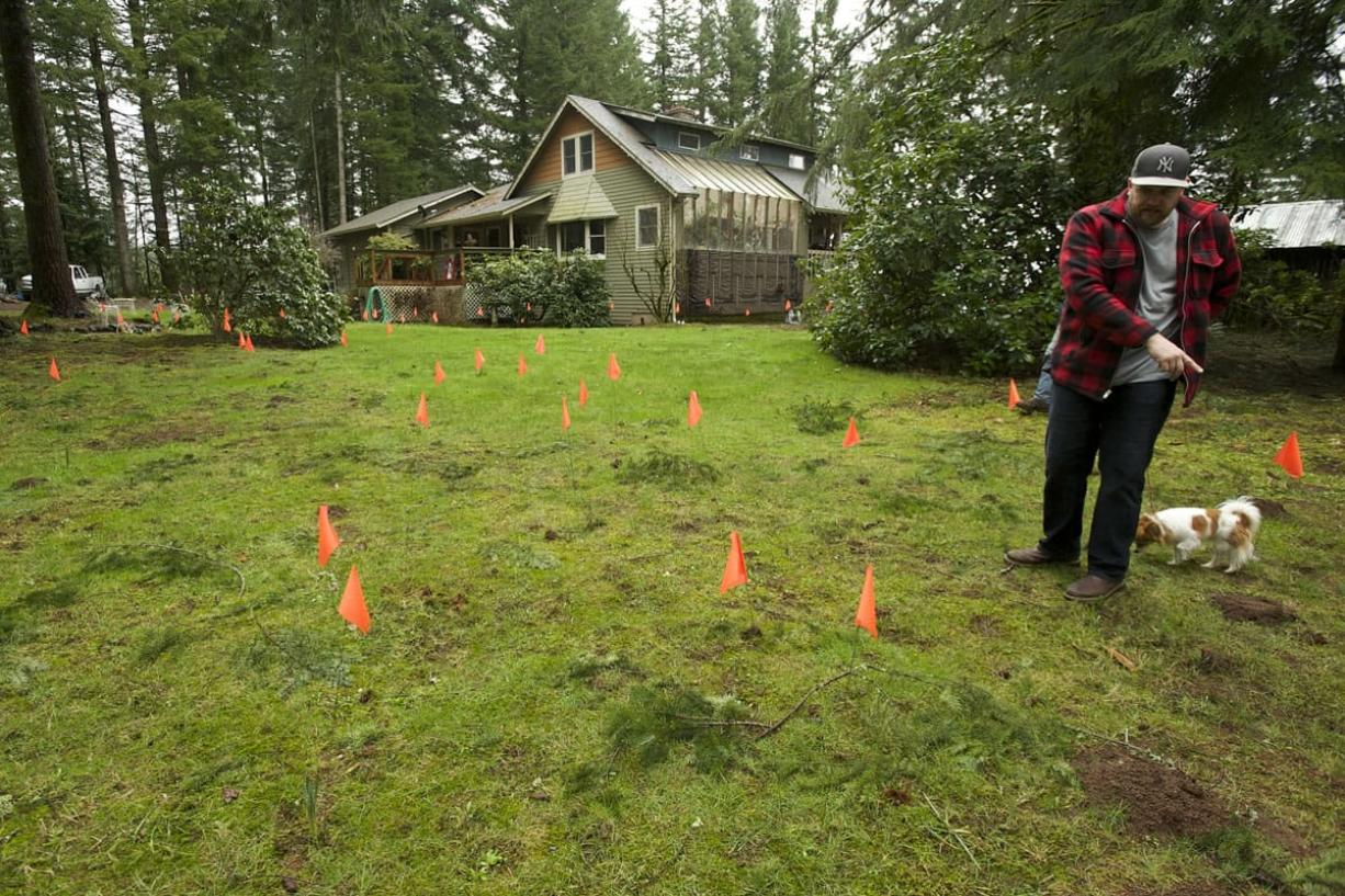 Linda Sperling's son Andy Sperling walks in his family's yard Tuesday among orange flags that mark the locations where a metal detector has found objects in the ground, some of them bullets.
