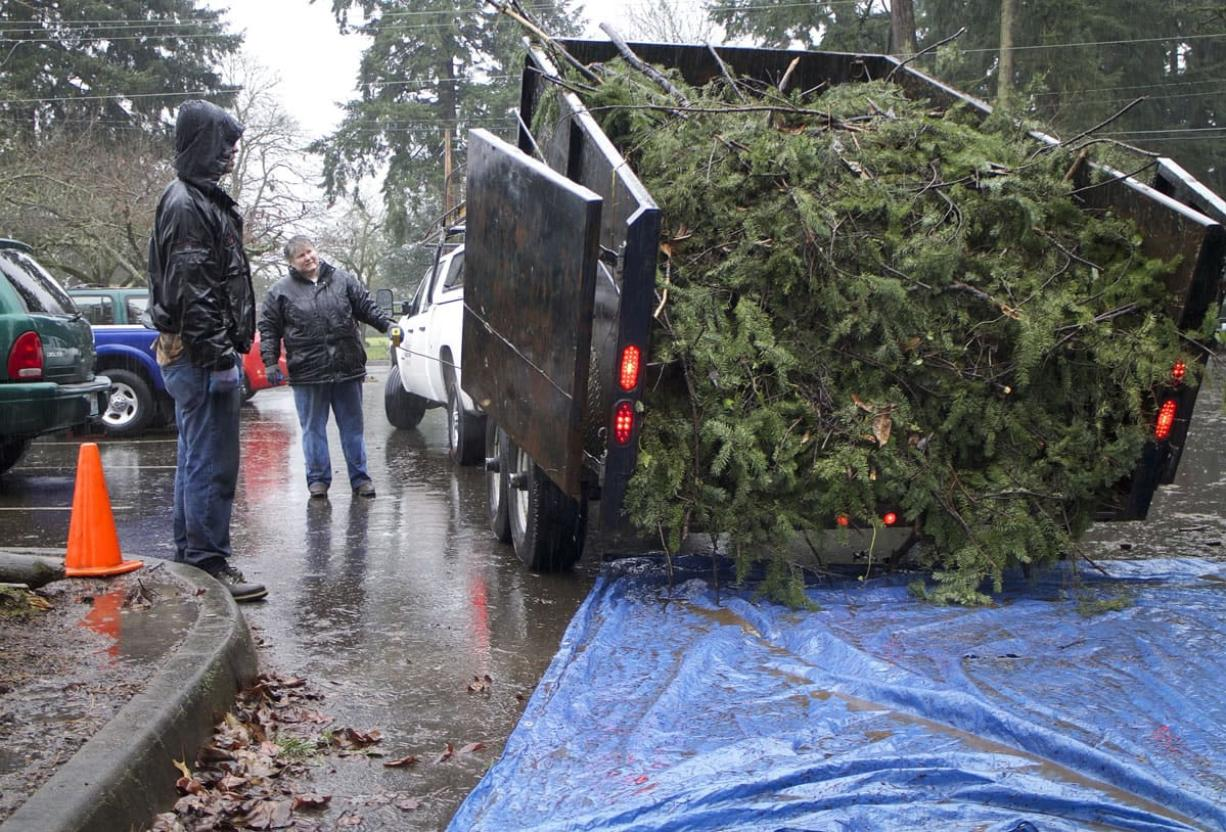 Colleen Neel of the Central Park neighborhood, back center, dumps a load of tree clippings onto a tarp, while Darrel England of Rose Village, left, watches on Jan. 17.