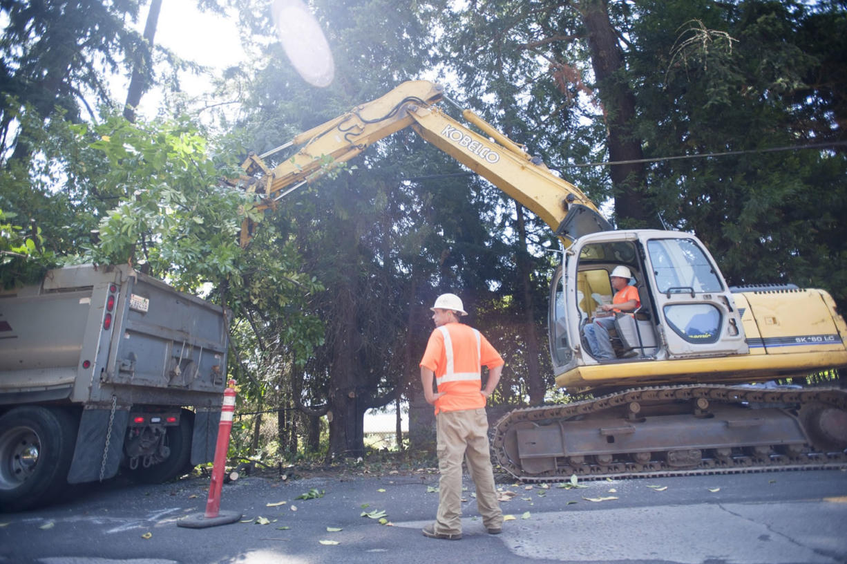 City contractor Andrew Halme of Battle Ground company Halme Excavating clears brush Wednesday along Southeast Evergreen Highway in Vancouver, where construction of a pedestrian walkway begins this week.