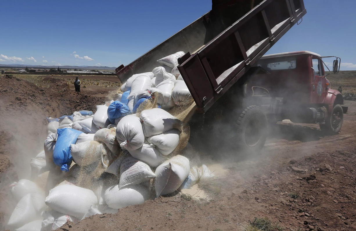 Photos by Juan Karita/Associated Press A truck dumps Peruvian quinoa to be burned Nov. 7 in Guaqui, Bolivia. Bolivia has started taking a tougher line on cheaper factory-farmed quinoa from Peru, whose higher output stems from an easier coastal climate but also the chemicals its agribusinesses use.
