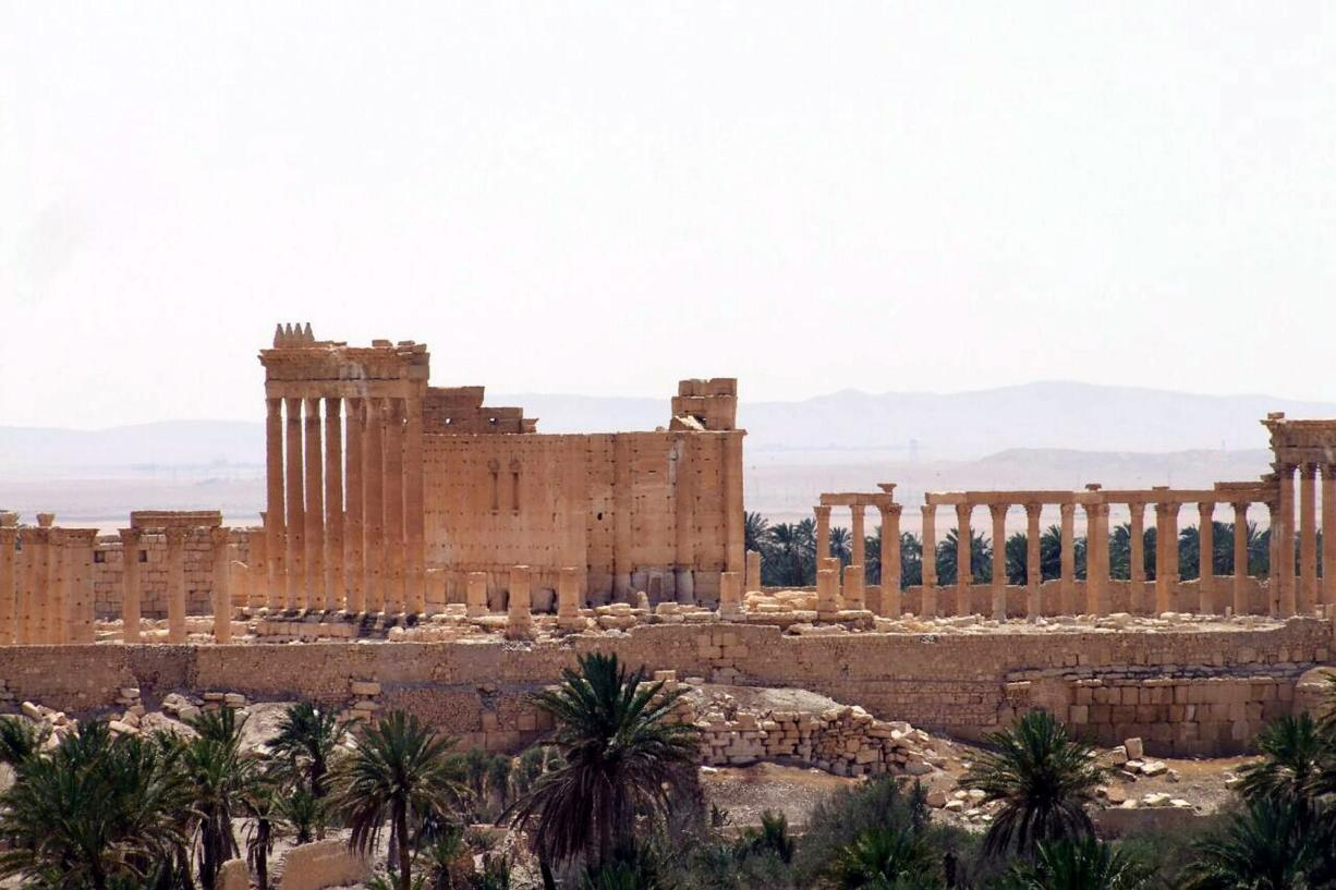 Islamic State seizes ancient town of Palmyra in Syria