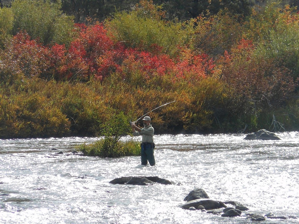 October prime for this steelhead run | The Columbian
