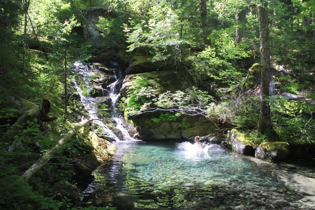 Trek off-trail into the heart of the Opal Creek Wilderness