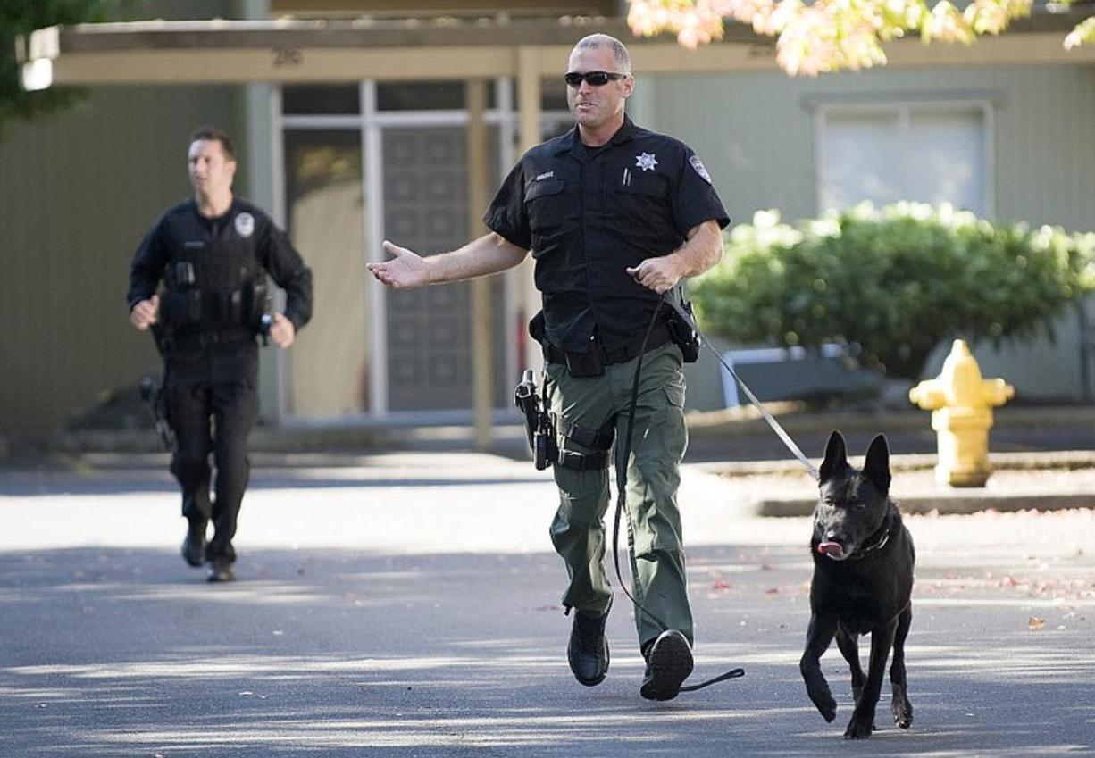 Clark County Sheriff's Deputy Rick Osborne and his K-9 Kane search for a bank robbery suspect in September.
