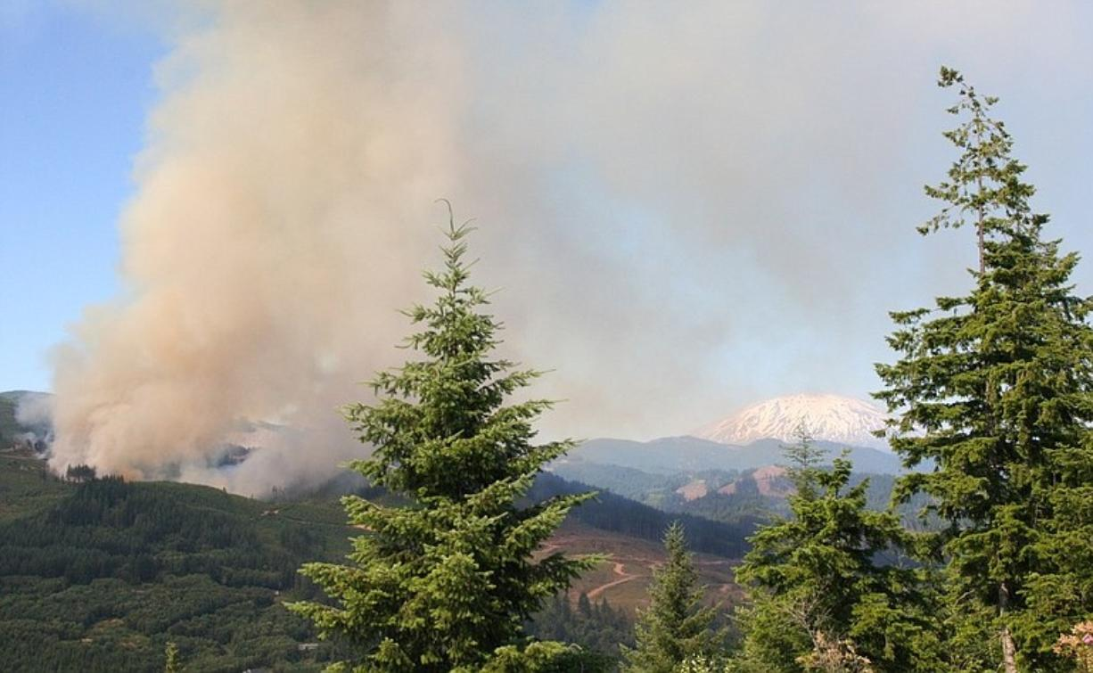 Fire burns in 20-year-old timber north of Lake Merwin on Saturday. The fire was reported at about 3 p.m.