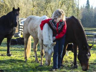 August reader photos: Horses and Farm Life