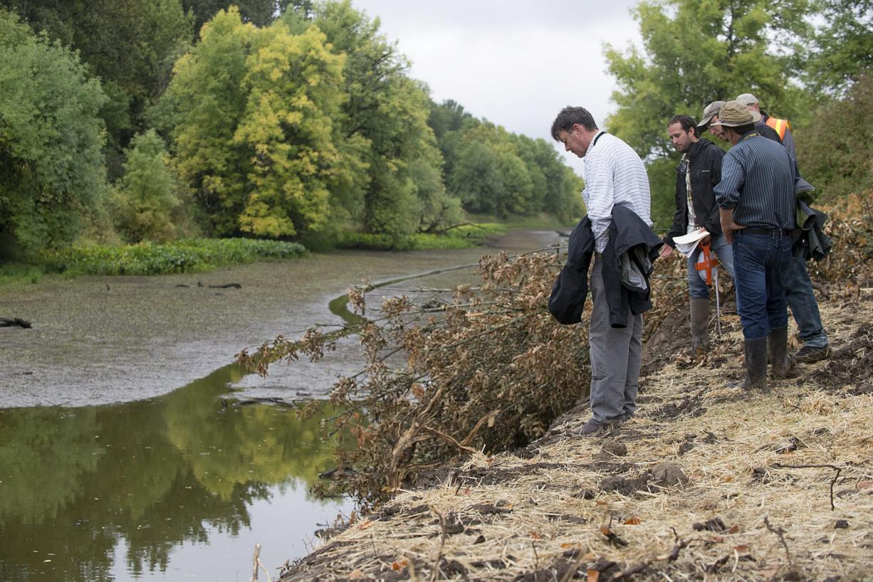 John Tyler of the Bonneville Power Administration, left, checks out the Buckmire Slough at the northern most barrier while joined by Tom Josephson of Columbia River Estuary Study Taskforce, second from left, on Friday.(Amanda Cowan/The Columbian )