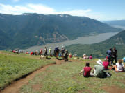 Hiking to the summit of Dog Mountain in the Columbia Gorge is a classic Memorial Day weekend trip enjoyed by thousands if the weather is nice.