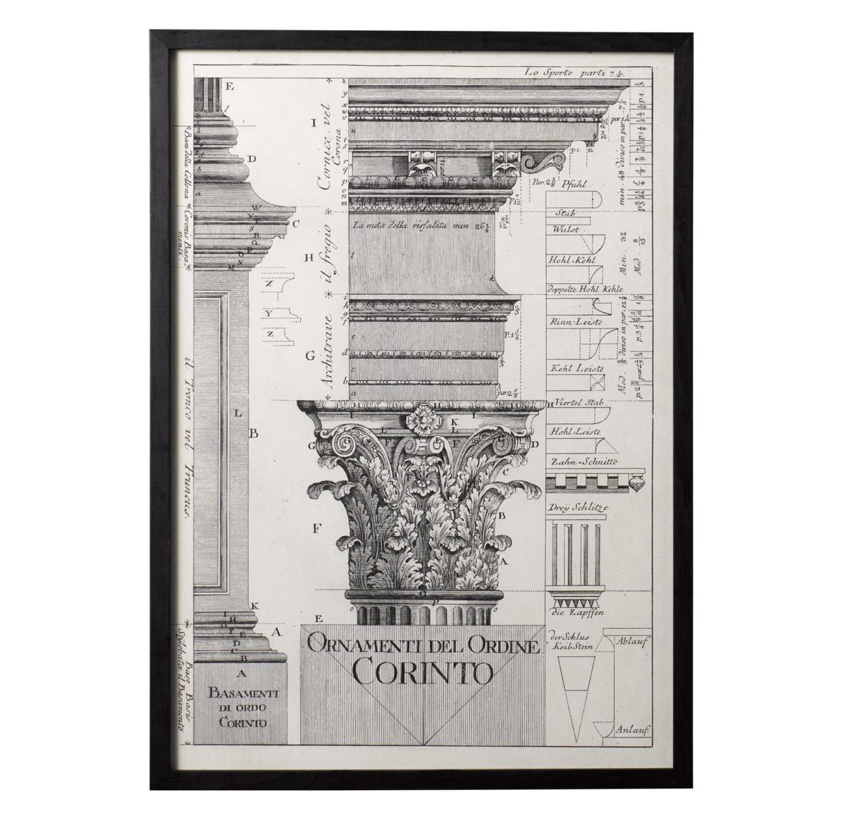 Neoclassic Art Black And White Line Drawing Motifs