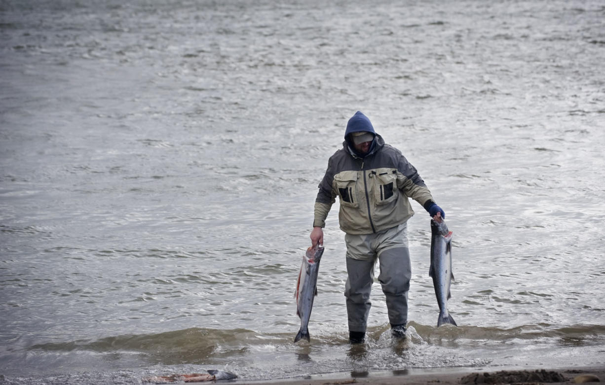 Spring chinook anglers are anticipated to have a good year if water conditions cooperate.