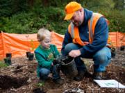 Vancouver city employee Tony Collins helps Lukas Young, 4, remove a sapling from its pot during a tree-planting in Vancouver on Saturday. The event, coordinated by the Vancouver Watersheds Alliance, was among several in the area that coincided with national Make a Difference Day. (Molly J.