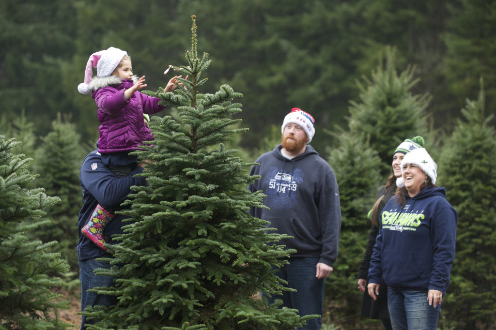 Families flock to Washougal's Farrell Farms to get their Christmas ...
