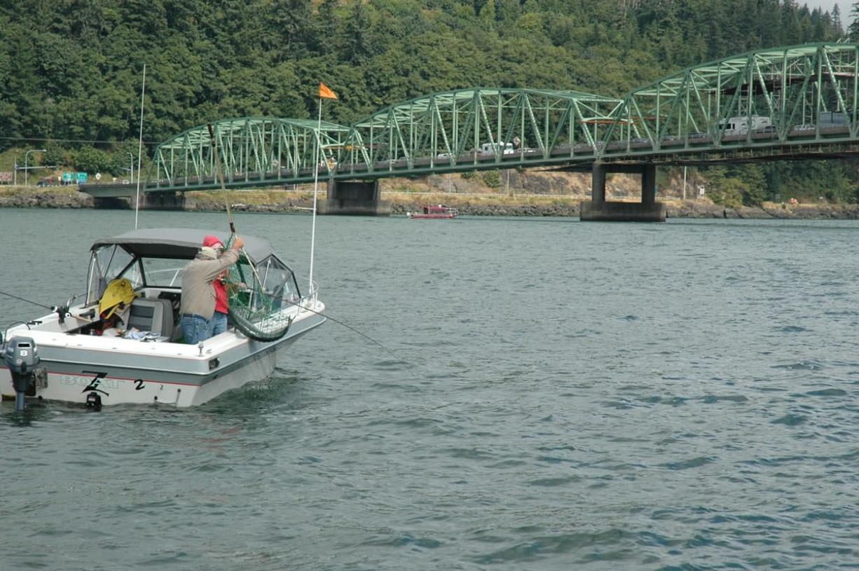 Anglers had an excellent season at Buoy 10 this fall as more than 1 million fall chinook entered the Columbia River.