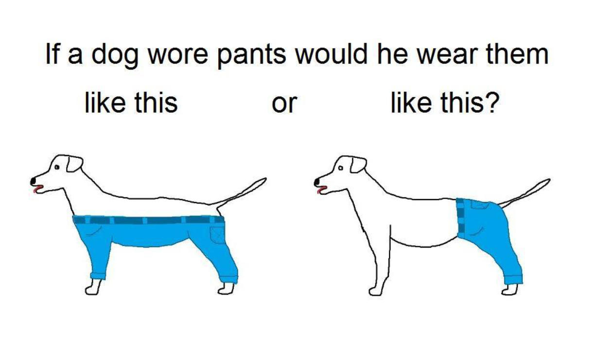 The Internet is abuzz with the dog pants discussion.