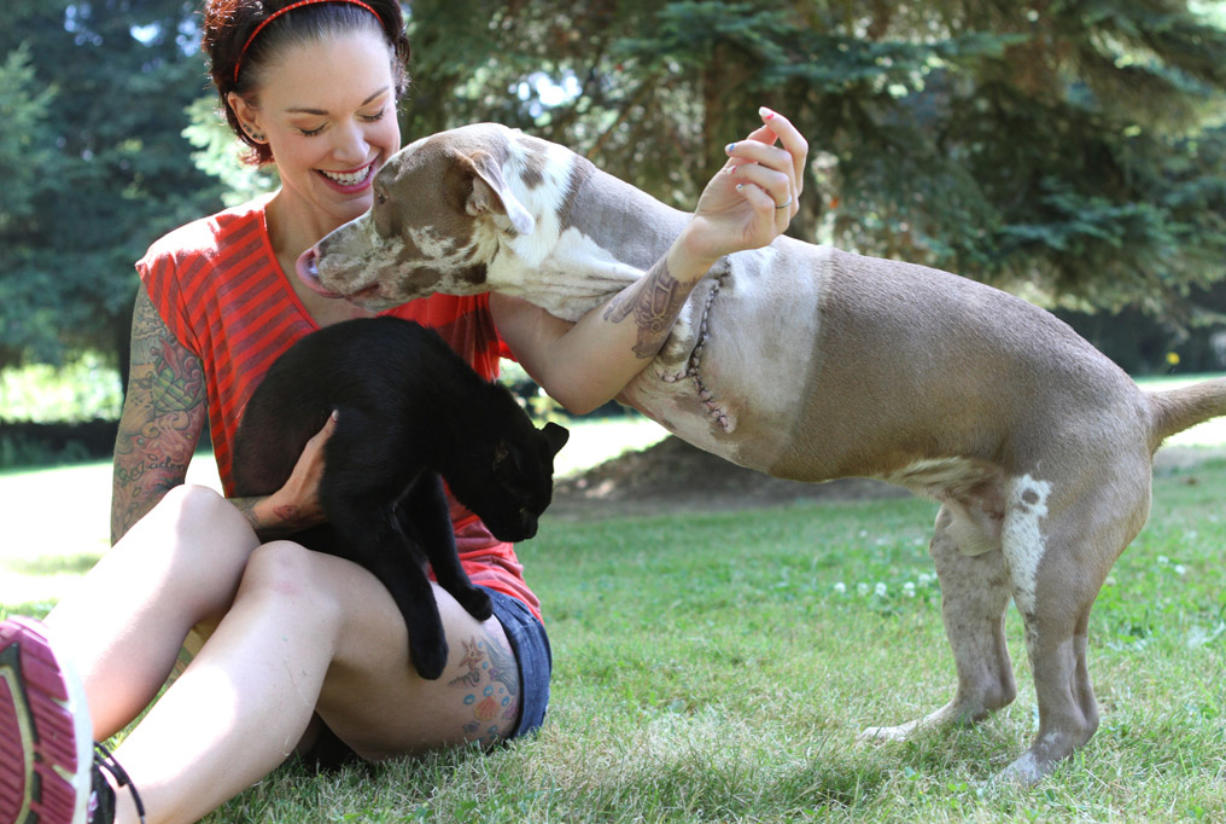Five days after surgery, London is running around and playing with Panda Paws Rescue founder Amanda Giese.