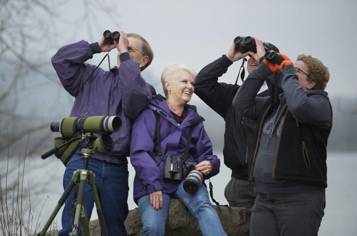 """Birders, from left, Arden and Sherry Hagen and Eric and Tammy Bjorkman, all of Vancouver, spent 2012 trying to track down as many species of birds as possible in a challenge known as a """"big year."""" Both couples beat the previous state record of 359 birds."""