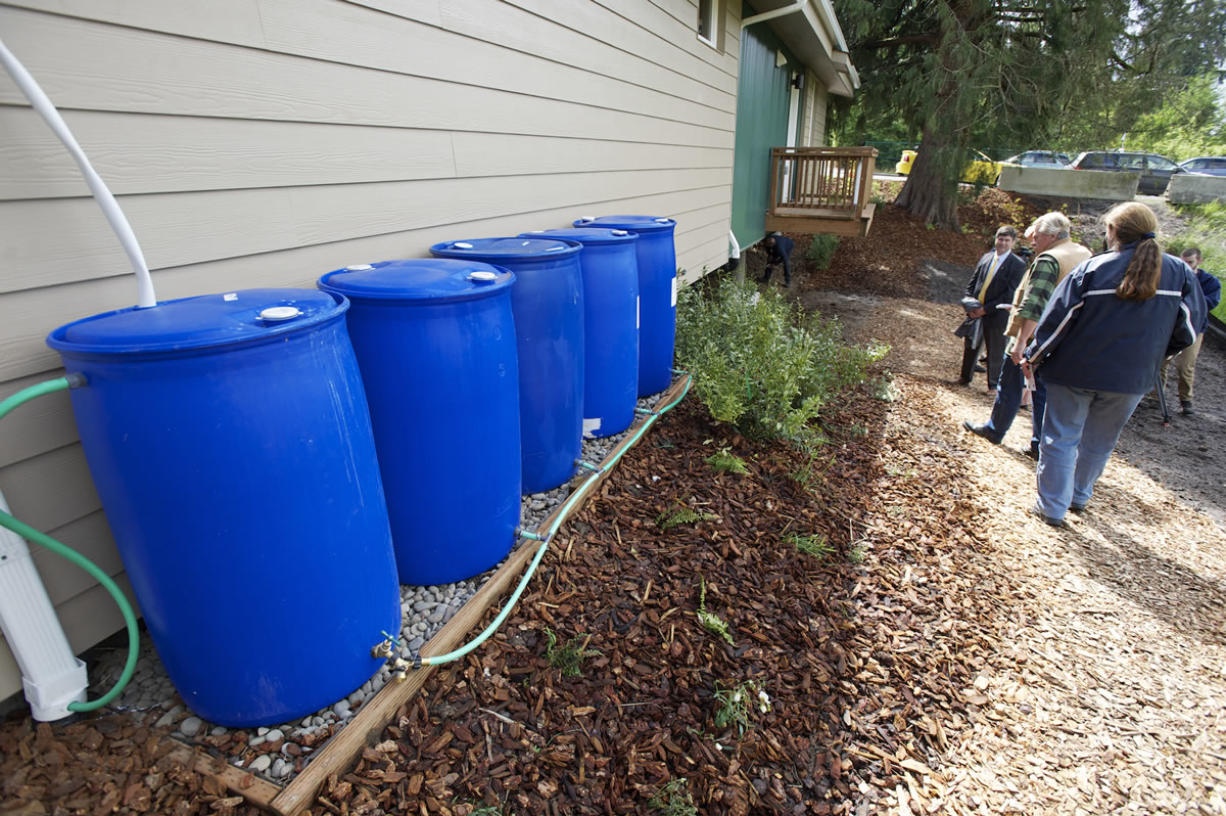 Rain barrels in the backyard collect stormwater runoff to irrigate the landscape.