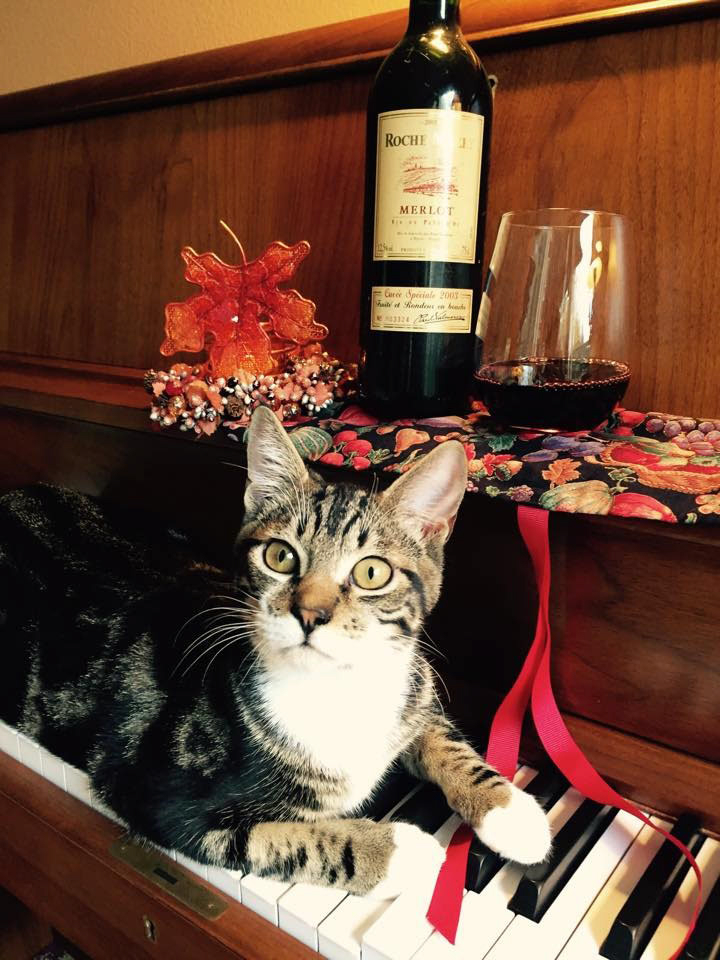 French Door Opens To Raise Money For Cats The Columbian