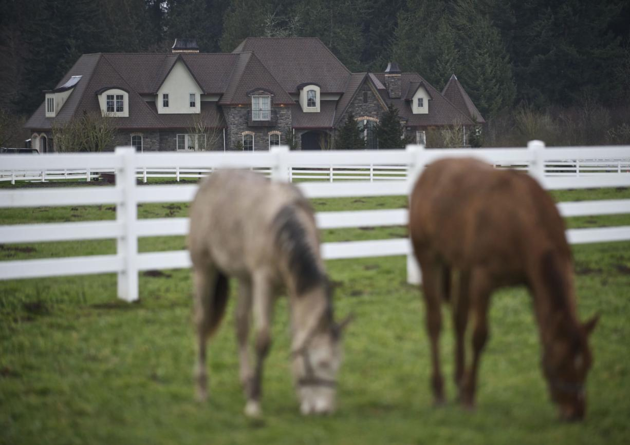 Houses on acreage in a pastoral setting attract families to the Brush Prairie-Hockinson ZIP code, the wealthiest in Clark County and the second-richest in the Portland metropolitan area.