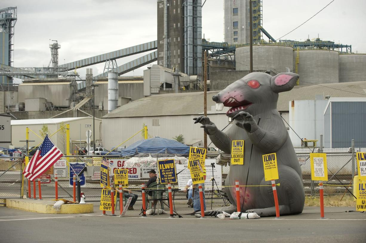 An inflatable rat joins the picket line with locked-out ILWU workers at the United Grain Corp.