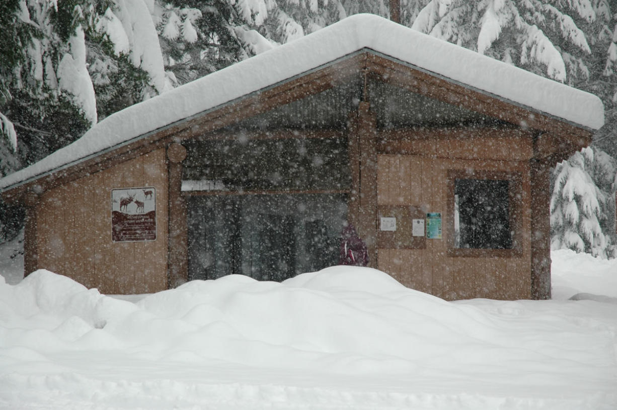 Several feet of snow has fallen in the past week at Lone Butte Sno-Park in the Gifford Pinchot National Forest.
