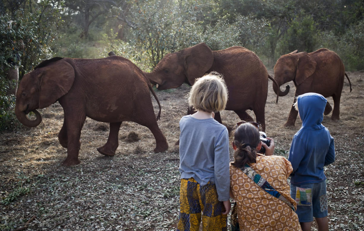 Foreign visitors take photographs as baby orphaned elephants return for feeding time after spending the day in Nairobi National Park, at the David Sheldrick Wildlife Trust elephant orphanage in Nairobi, Kenya, on Sept.30. The risk to the country's tourism was one of the first concerns expressed by officials during the initial days of the Westgate Mall siege, but tourists continue to fly to Kenya for safaris and beach vacations despite a number of foreigners being killed in the attack.