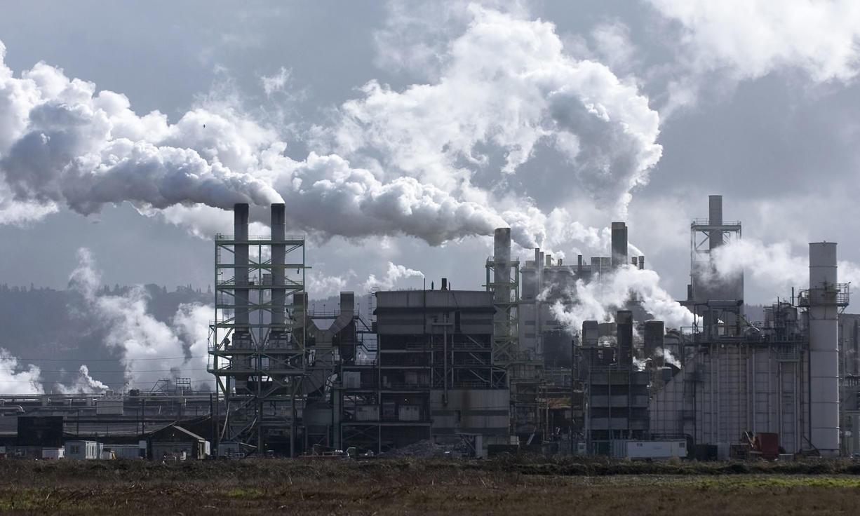 The Longview Fibre plant in Longview.