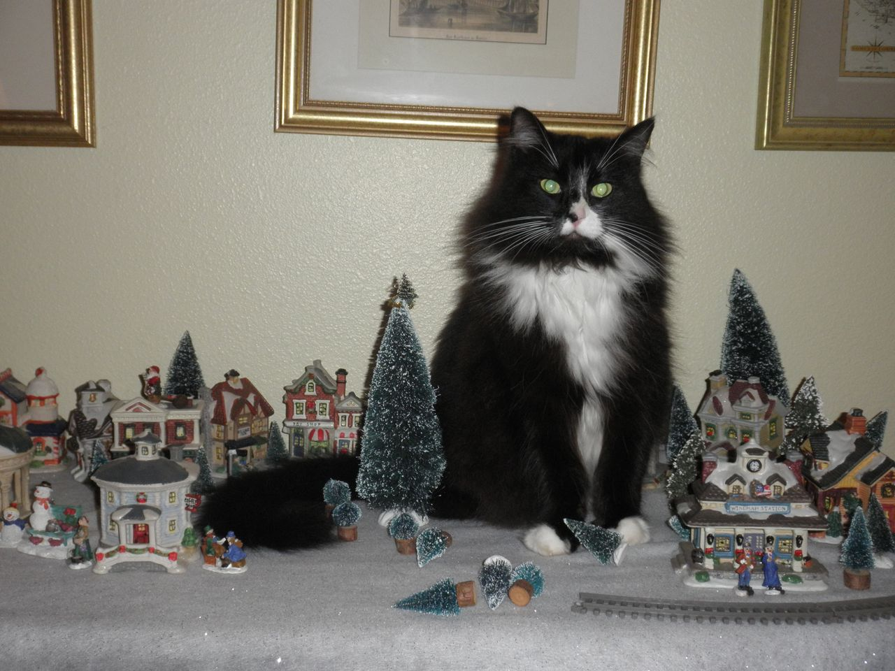 Our cat Maya likes to play the Godzilla of the Christmas village. For some reason, she loves sitting in the middle of town.