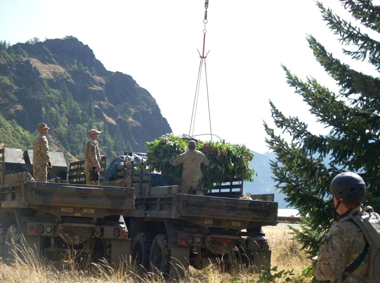 A helicopter airlifts a bundle of marijuana to a truck as a multiagency team busts a remote marijuana-growing operation in Skamania County in 2009.