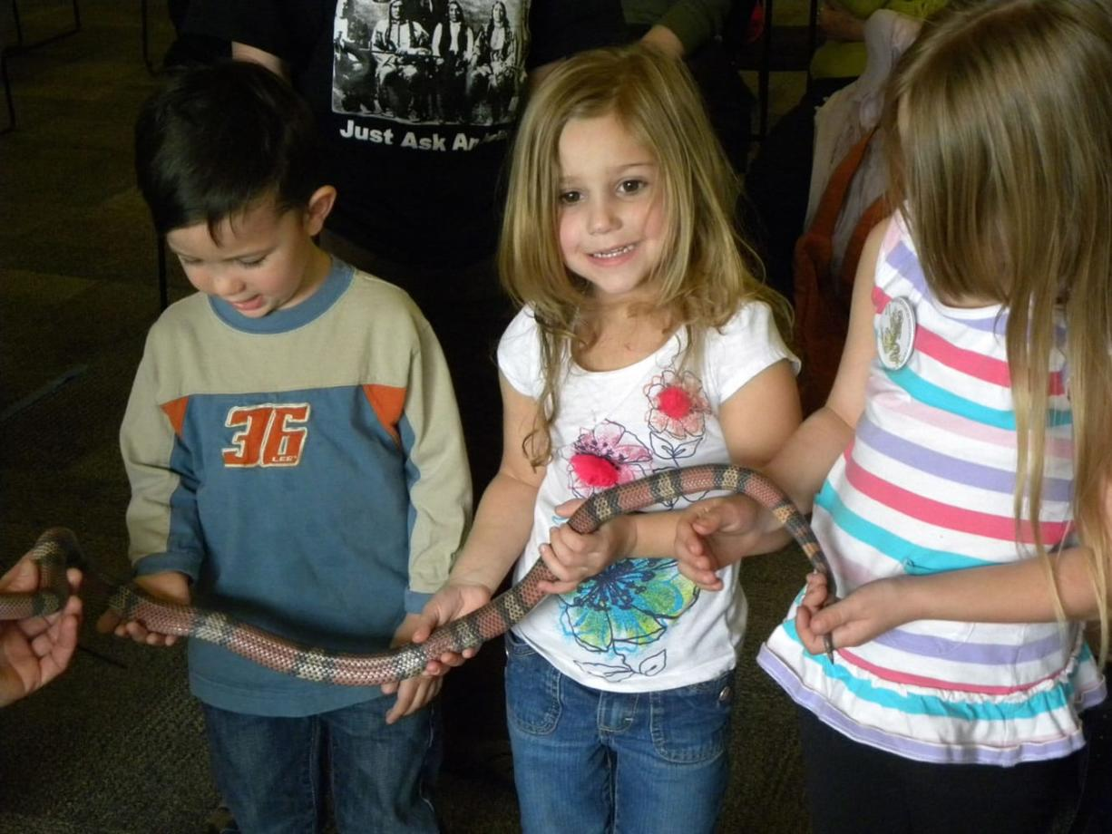 Eric Florip/The Columbian From left, Jonathan Roy, 3, of Woodland and McKenna Burleson, 4,  and Cadence Burleson, 5, both of Vancouver, hold a Honduran milk snake Saturday.