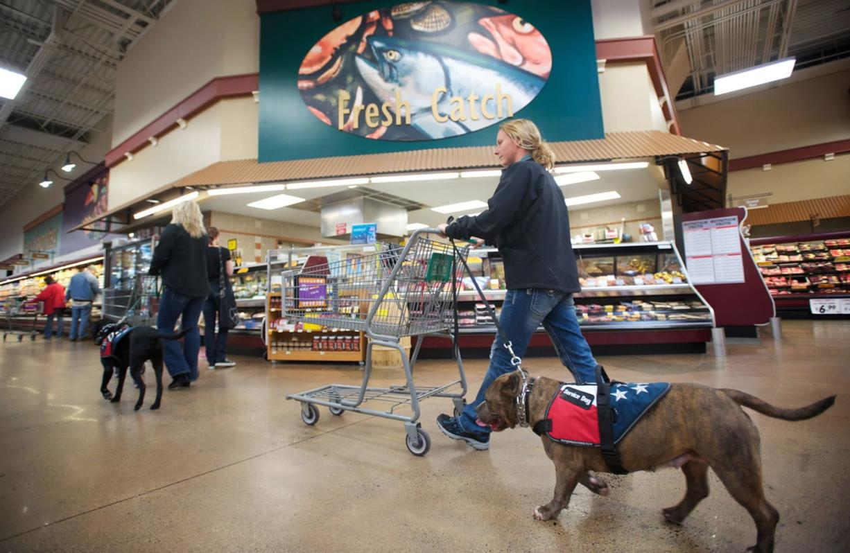 Shannon Walker, left, and Ora Evans, right, walk Oso and Diamond, respectively, through the Battle Ground Fred Meyer on Wednesday as part of their therapy dog training.