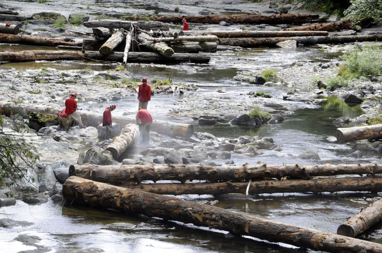 The Lower Columbia Fish Enhancement Group has anchored nearly 160 logs along the Upper Washougal River this year in an effort to restore natural fish habitat. Inmate crews from Larch Corrections Center work above Dougan Creek Campground earlier this week.