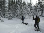 Cross-country skiers will find about 4 feet of snow on the trails at the headwaters of the Wind River.