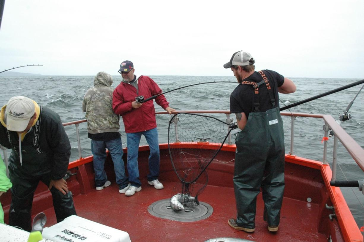 Deckhand Donald Pitts nets a salmon for a charter boat customer in 2014 in the Pacific Ocean off Ilwaco.