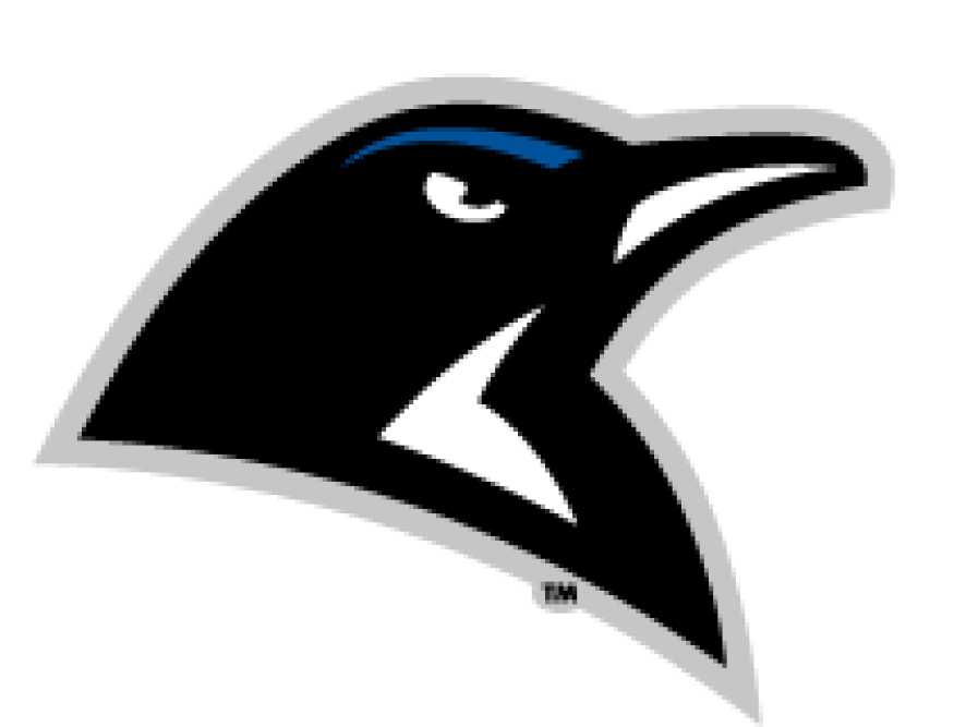 Clark College Penguins
