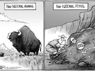 Editorial Cartoons, May 1-7