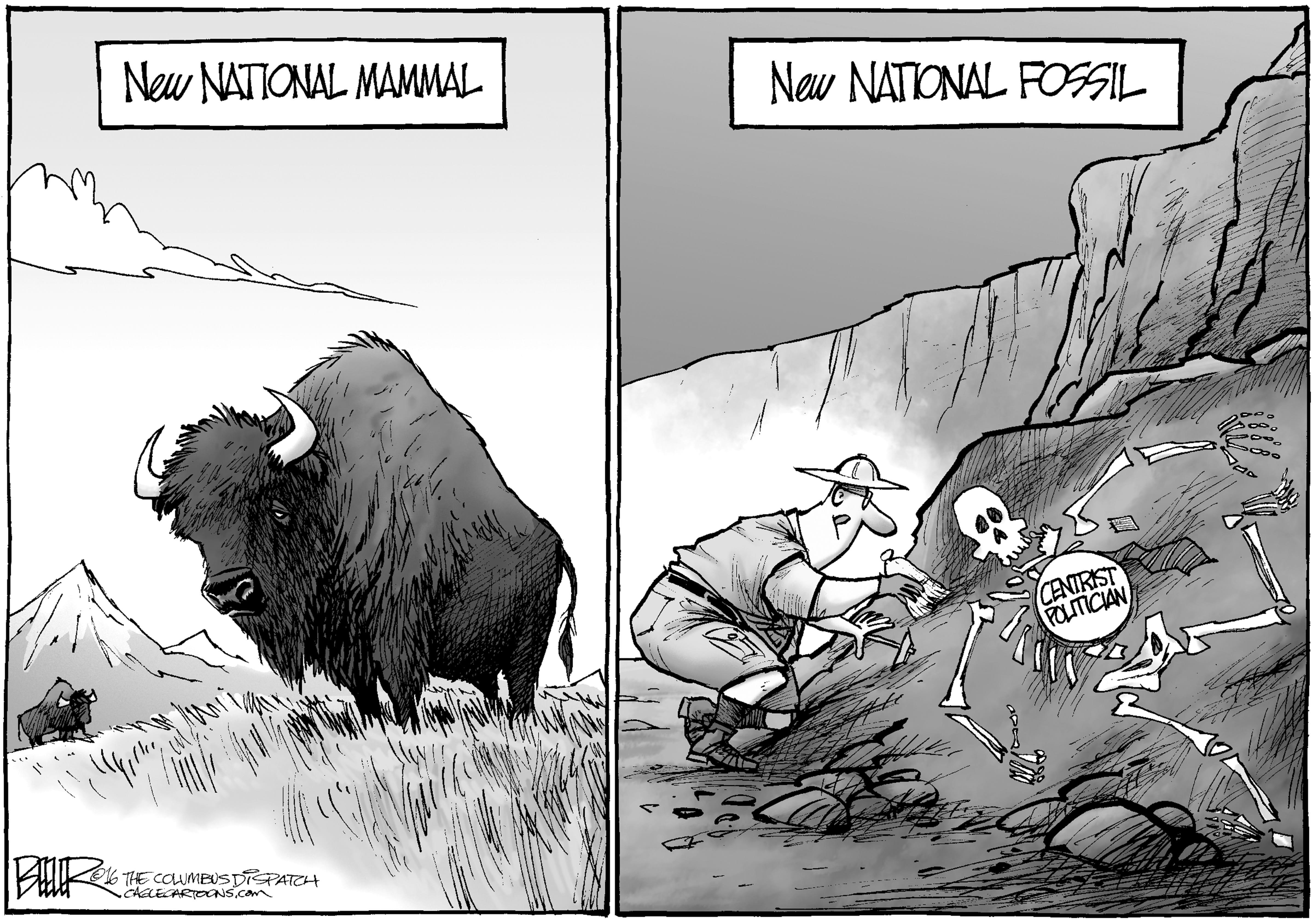 May 7: National Mammal