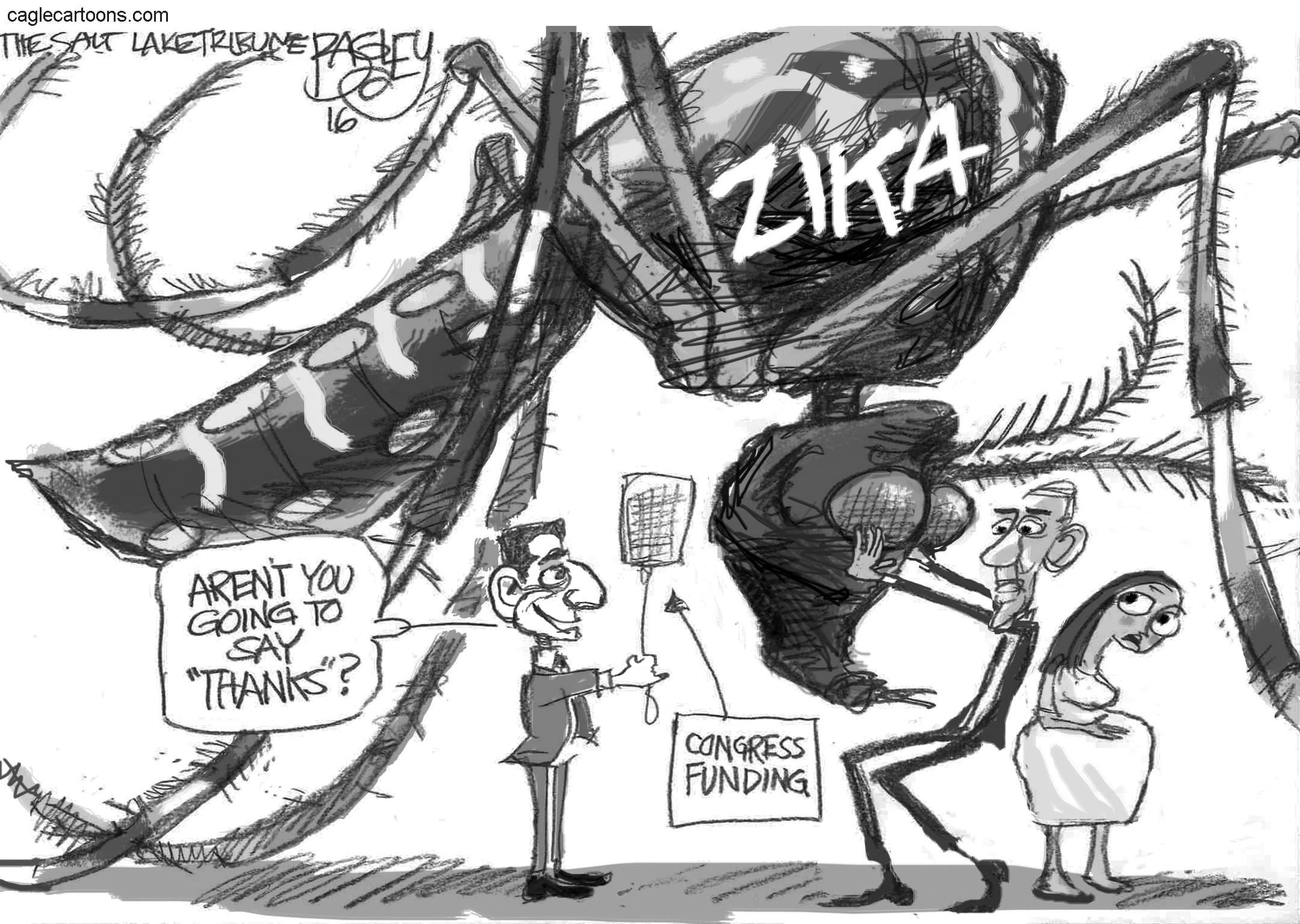 May 28: Zika Mosquito