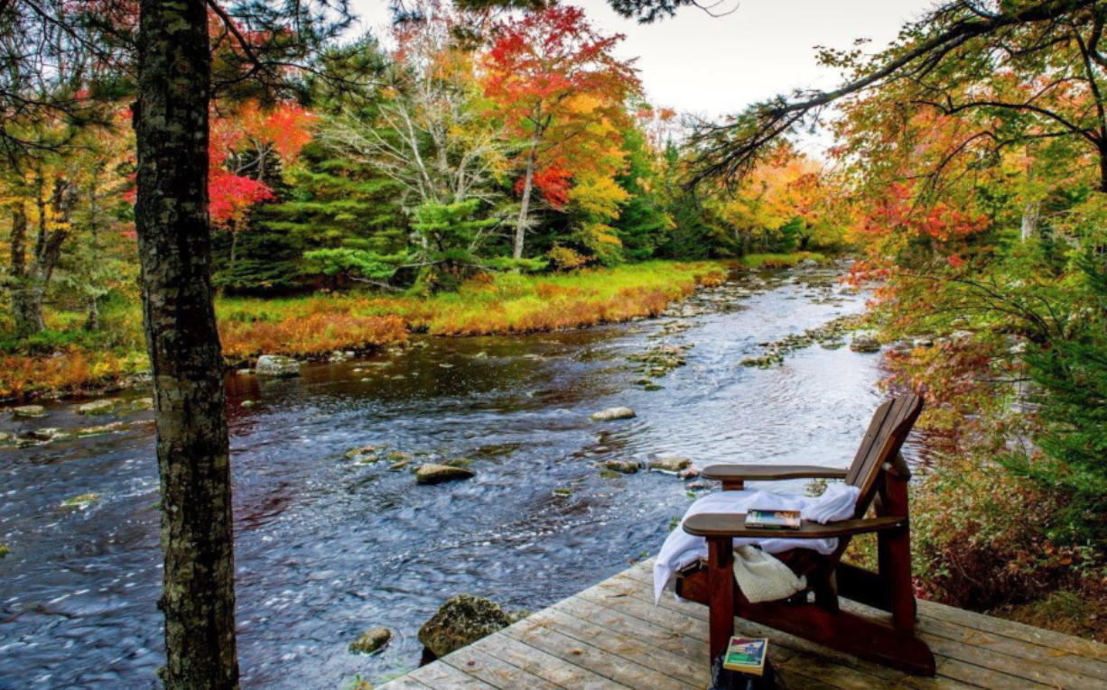 Trout Point Lodge in Kemptville, Nova Scotia, Canada, offers guided nature walks that are inspired by the Japanese philosophy of forest bathing, which encourage participants to slow down and contemplate nature with all their senses as a way of promoting well-being.
