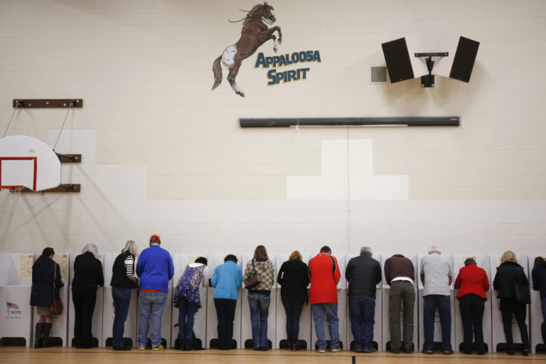 Voters cast their ballots at Cynthia Mann Elementary School in Boise, Idaho, on Tuesday, Nov. 8, 2016. (AP Photo/Otto Kitsinger)