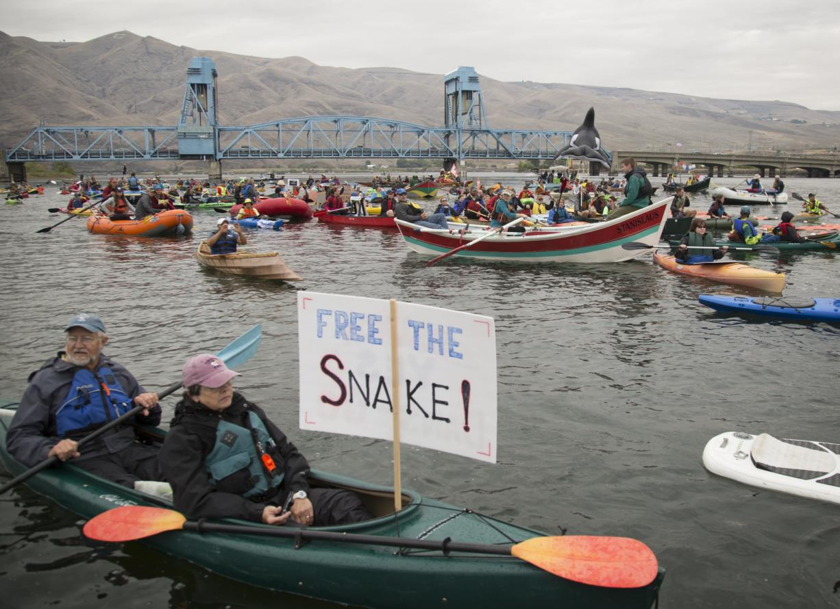 A flotilla of small vessels demonstrated in mid-September near the confluence of the Snake and Clearwater rivers at Lewiston, Idaho, in favor of removing four dams on the lower Snake River.