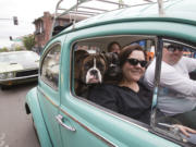"""Susan Schrantz takes part in """"Cruisin' the Gut"""" with her family in a VW Bug on Main Street in downtown Vancouver in 2016."""